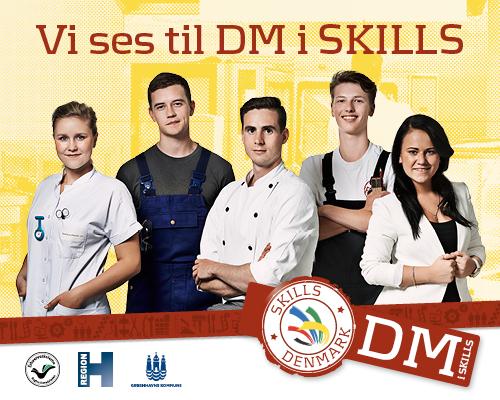 DM i Skills 2015_1